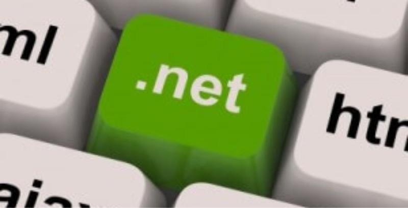 .net career